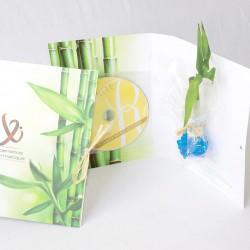 Carte de voeux avec plante bambou et CD - Thème relaxation zen