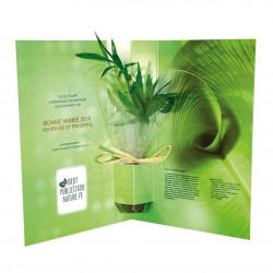 Carte voeux plante postale (palmier) personnalisable et recyclée