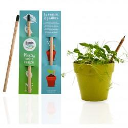 """Crayon """"Sprout"""" avec capsule de graines - Crayon à planter personnalisé"""