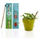 Crayon Sprout avec capsule de graines - Crayon à planter