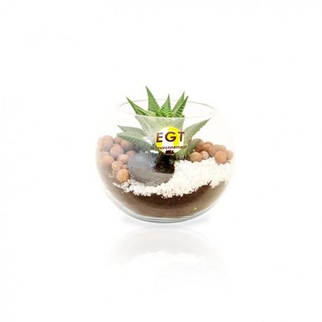 Terrarium mini-jardin publicitaire personnalisé - Petit modèle