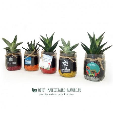 Plante dépolluante en bocal publicitaire personnalisable