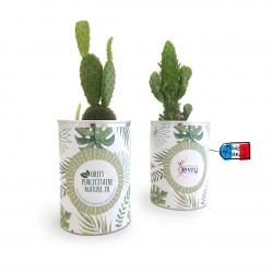 Cactus ou plante au choix en canette personnalisée