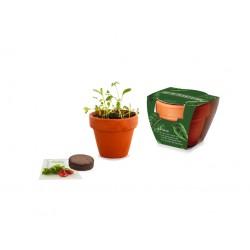 Kit de plantation publicitaire standard pot terre cuite