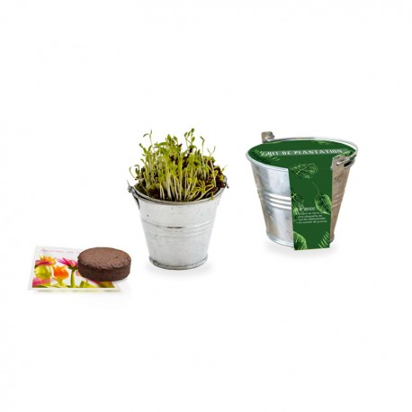 Kit de plantation pot zinc