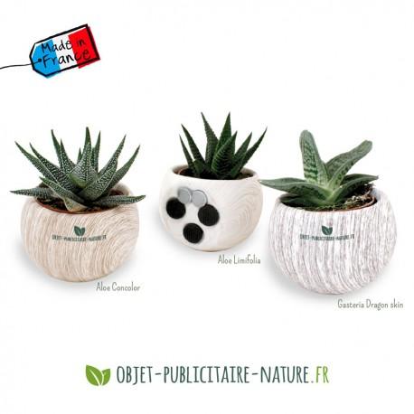 Plante publicitaire en pot aimanté céramique aspect bois