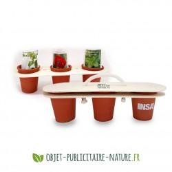 Kit de plantation personnalisable 3 pots terre cuite avec support bois