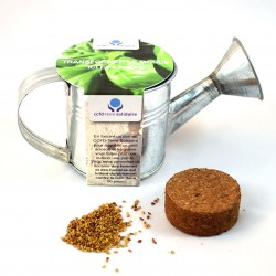 Kit de plantation arrosoir en zinc personnalisable graines au choix