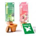 Mini serre 1 pot terre cuite avec sachet graines et personnalisation