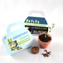 Mallette à personnaliser - Kit de plantation publicitaire