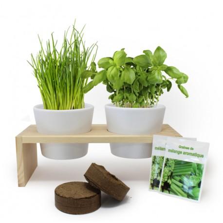 Plateau duo aromatiques - Kit de plantation publicitaire - Cadeau d'entreprise écologique