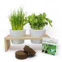 Plateau duo aromatiques - Kit de plantation publicitaire