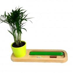 Plateau bois de bureau avec plante au choix