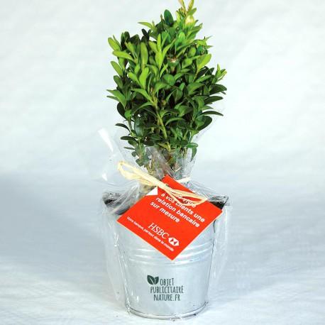Plant d'arbre publicitaire en pot zinc personnalisable