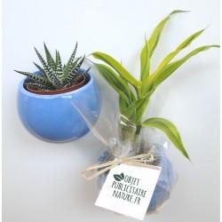 Plante publicitaire en pot aimanté céramique personnalisable
