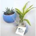 Plante publicitaire en pot aimanté céramique