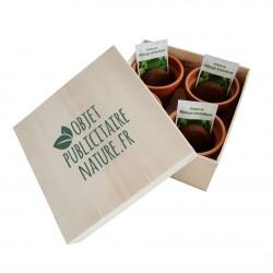 Coffret cadeau publicitaire 4 aromatiques en pots terre cuite