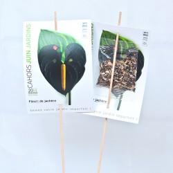 Carte personnalisée sur tige avec sachet de graines