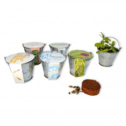 Kit de plantation mini pot zinc 6 cm - Fourreau publicitaire