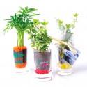Plante publicitaire en verre avec graviers colorés