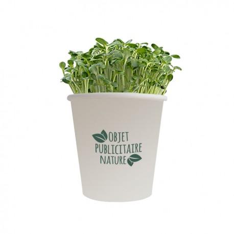 Kit de plantation publicitaire en pot carton grand modèle personnalisé