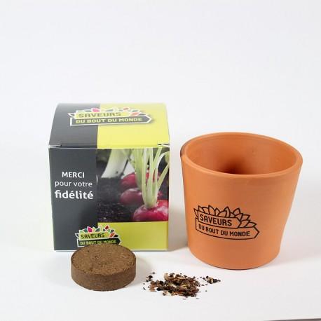 Petit cube de plantation boîte carton personnalisable pot terre cuite