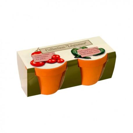 Kit de plantation publicitaire double avec 2 pots terre cuite 6 cm