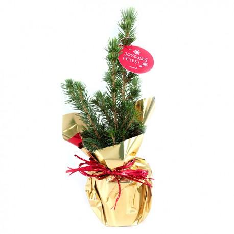 Sapin de Noël - Cadeau d'affaire personnalisé pour Noël