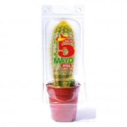 Petite serre publicitaire 1 pot cactus ou plante personnalisable