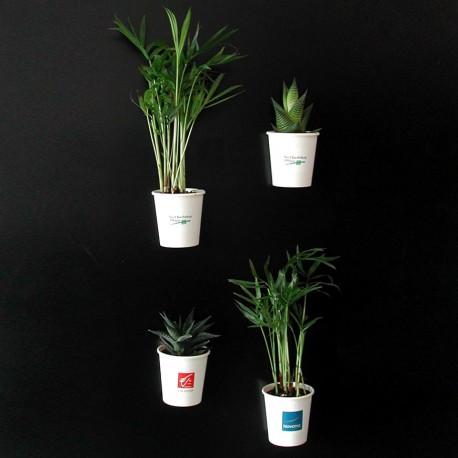 Petite plante publicitaire pot aimanté personnalisable