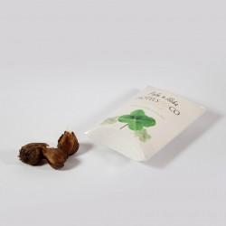 Goodies écologique - Bulbes de trèfle à 4 feuilles en berlingot personnalisé
